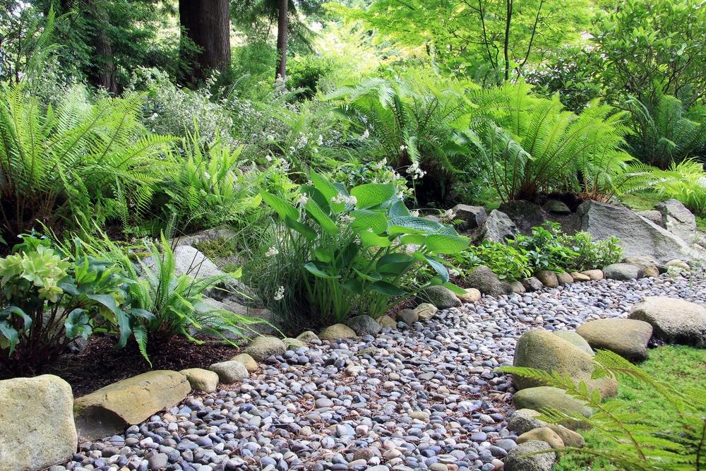 Rock Garden in Renton